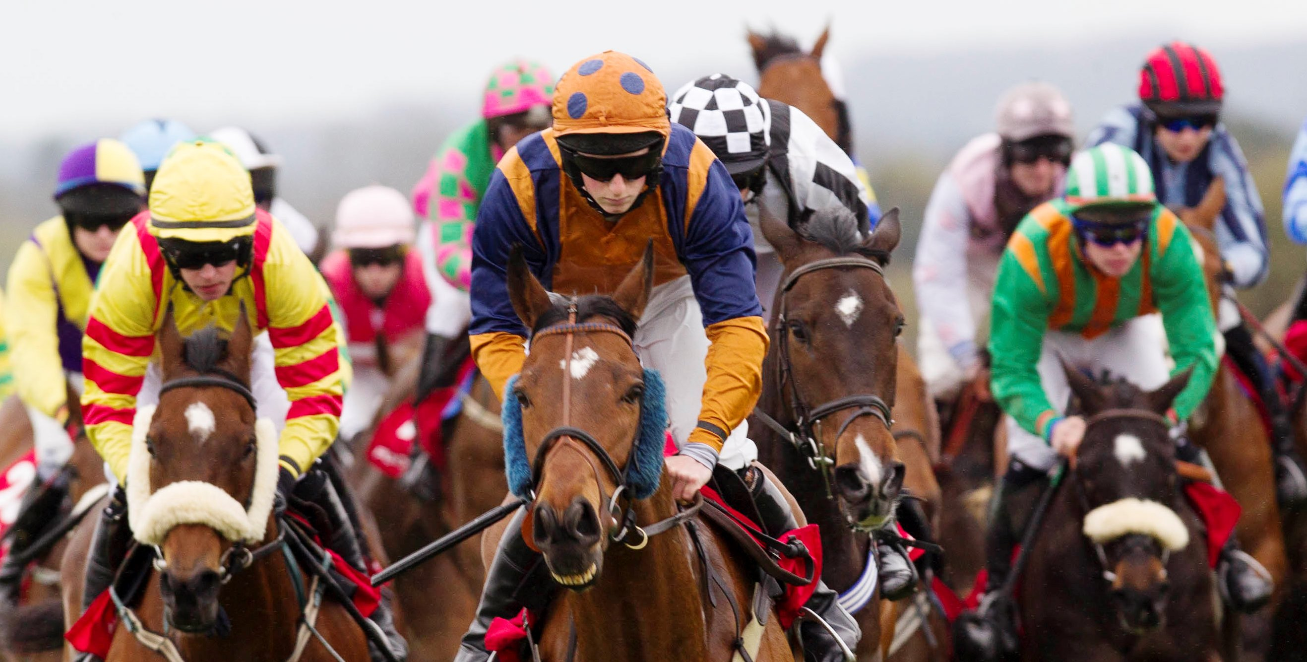 horse racing betting games mi cricket com espanol
