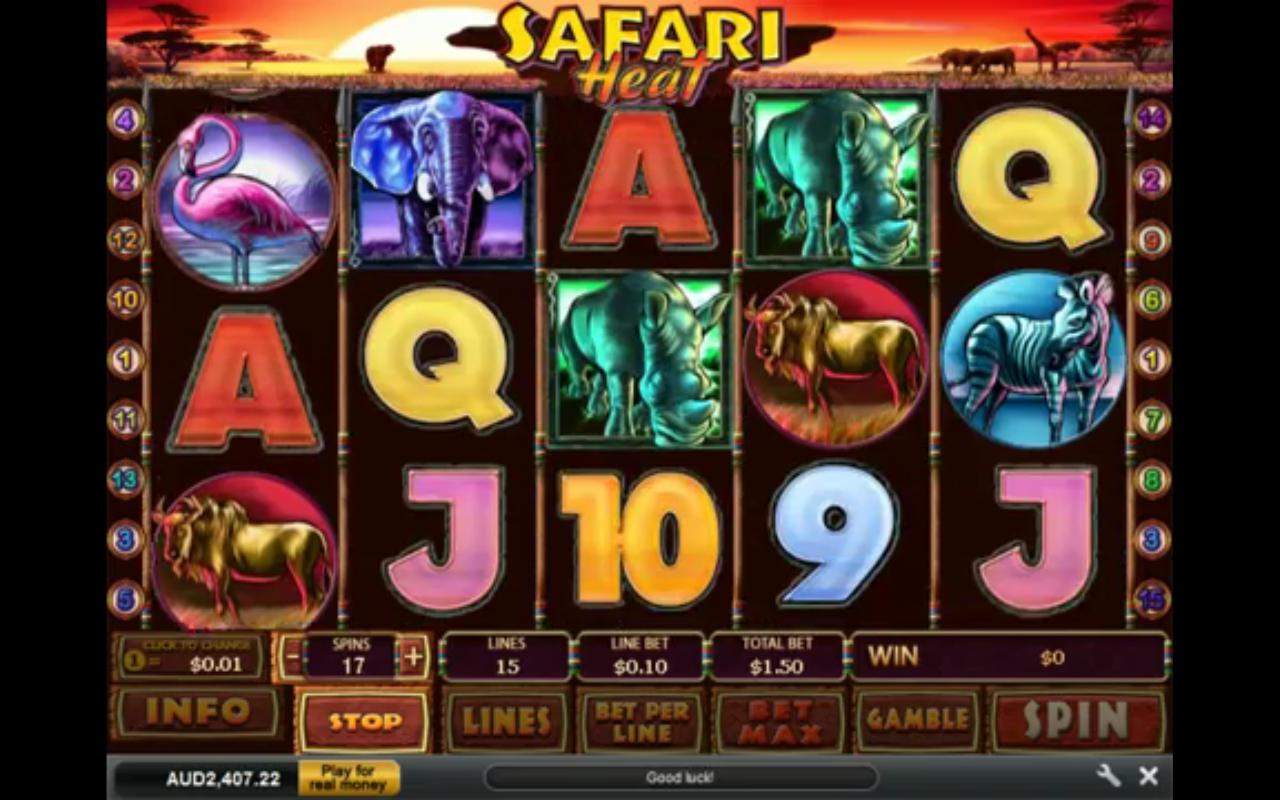 Safari heat casino game real casino chips flamingo