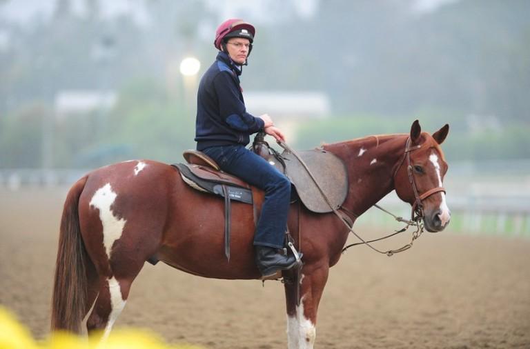 SANTA ANITA 1-11-2012. Trainer Aidan O'Brien watching his horses at morning work. Photo HEALY RACING.